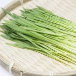 大麦若葉の健康効果