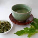 健康飲料「緑茶」と「桑茶」